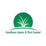 EverGreen Lawns and Pest Control